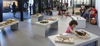 museo-ciencias